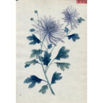 Chinese Export Botanical Painting, Blue Flowers