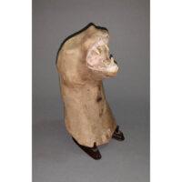 Cat head taxidermy mold