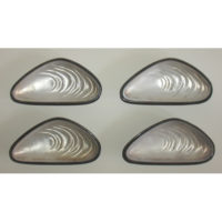 Shell Form Dishes,, Silver Plate and Glass, Set of 4