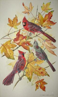 George Glazer Gallery Antique Bird Prints Basil Ede