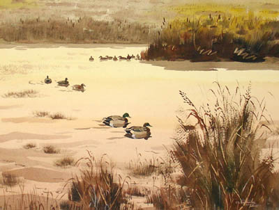 George glazer gallery antique prints duck pond by for Duck pond mural