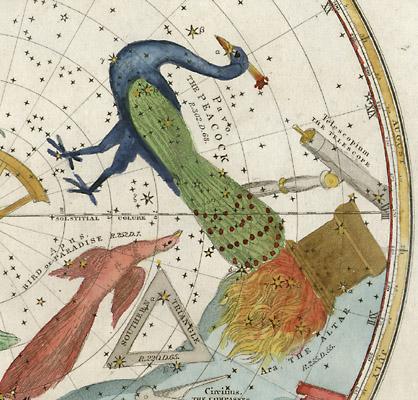 Southern Hemisphere detail