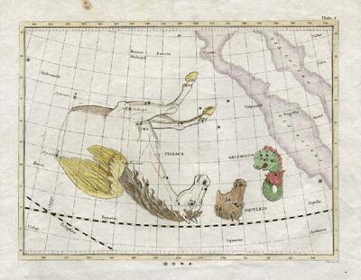 Plate 8: Delphinus, Equuleus and Pegasus