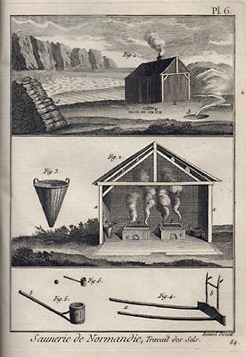 Marais Salans et Saunerie [Salt Marsh Saltworks]