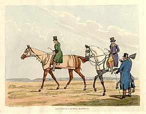 Top Hat Equestrians