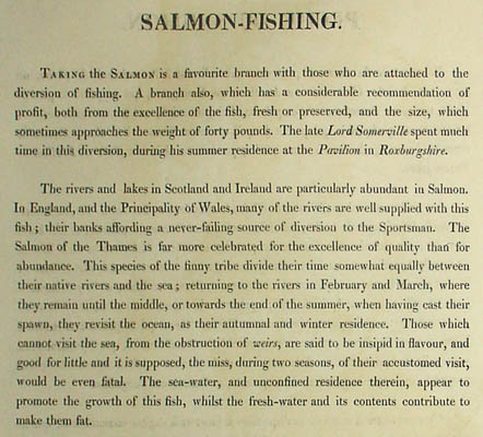 Fishing in a Punt, Pike Fishing, Salmon Fishing