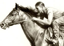 Citation — Portrait of Famous Race Horse