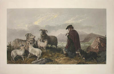 Pair of Sheep Herding Scenes
