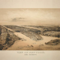 Panorama View, New-York and Vicinity