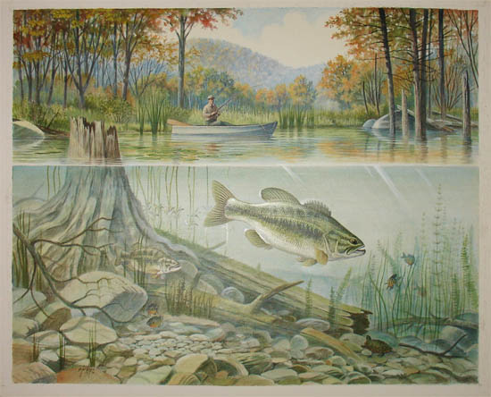 Sporting art fishing small mouth bass ron jenkins for Fish scenery drawing