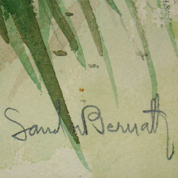[Coconut Palm] watercolor by Sandor Bernath, signature