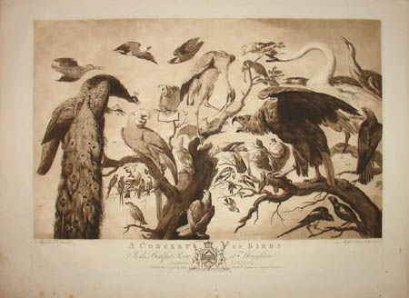 Frans Snyders: A Concert of Birds