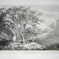 Thorn Trees in Bushy Park, Middlesex, Pl. 3