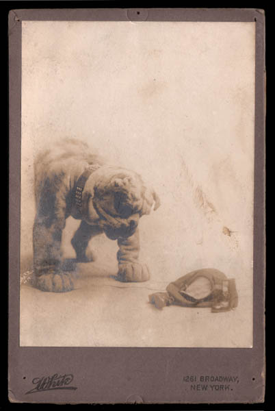 Buster Brown and Tige — Original 1905 Broadway Production