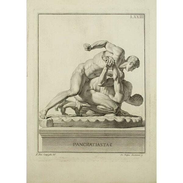 Pancratiastae, Plate 73, from Museum Florentinum