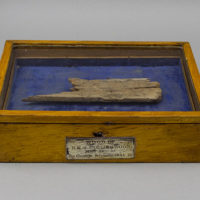 Relic Wood of H.M.S. Collingwood