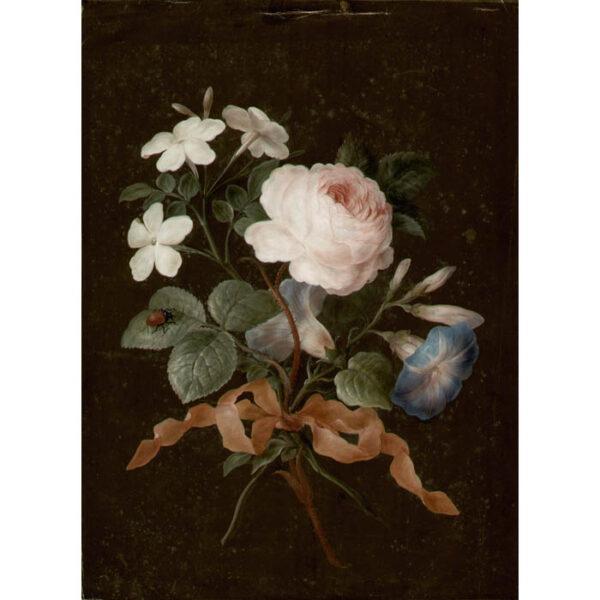 Jasmine, Rose, Blue Convolvulus, and Garden Beetle [No. 6]