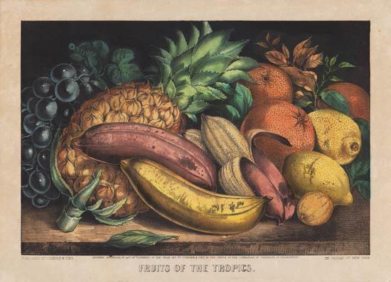 Fruits of the Tropics