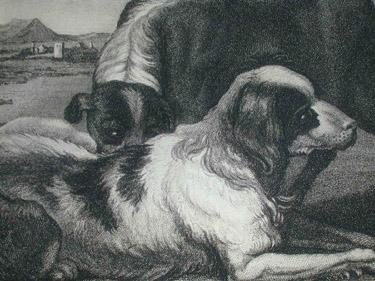 Hondius, Sporting Dogs, detail