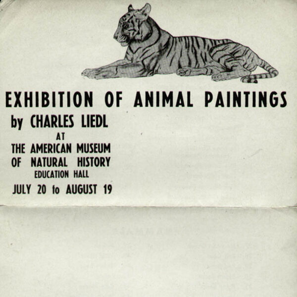 Charles Liedl Animal Paintings at American Museum of Natural History announcement