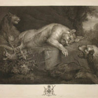 Peter Paul Rubens: Lions at Play