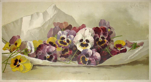 Art Print of Vintage Art Study of Flowers by Paul de Longpre
