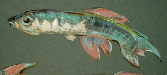Fish and Shells painting, detail