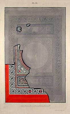 Plate XV