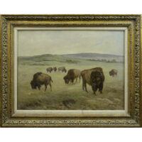 Peace on the Range — Bison