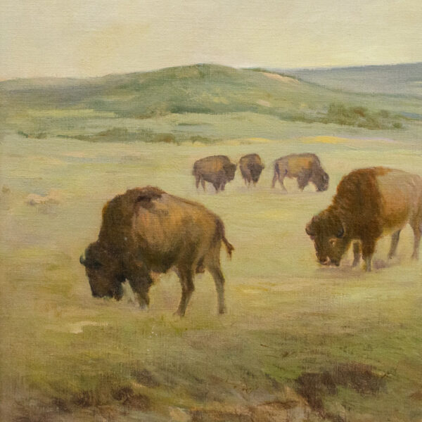 Peace on the Range — Bison, detail
