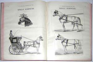 Moseman's Equestrian Trade Catalog