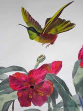 Oiseaux Mouches Clarisse, detail
