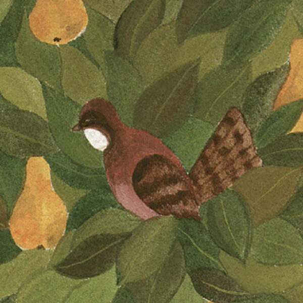 Partridge in Pear Tree, detail