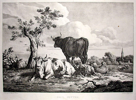 Cattle in the Landscape