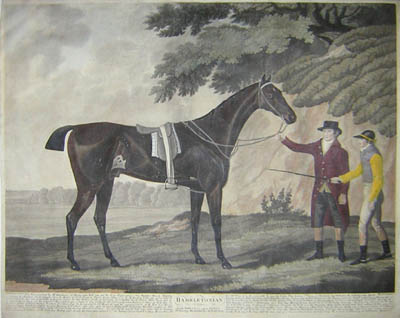 Hambletonian, British Racehorse