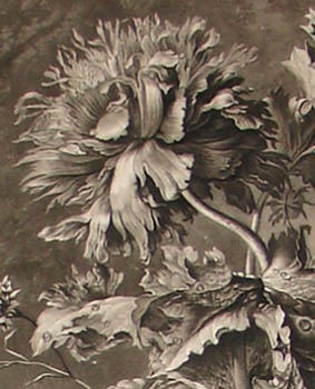 A Flower Piece, 18th Century Mezzotint