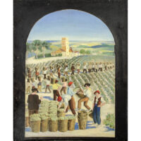 Vineyard Harvesters