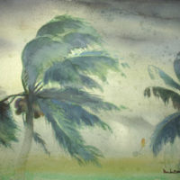 Windswept Palms, Honduras