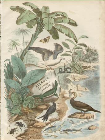 Atlante Zoologico Popolare Title Page