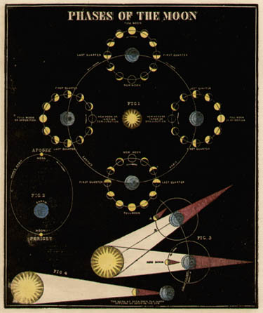 Smith's Illustrated Astronomy Phases of the Moon
