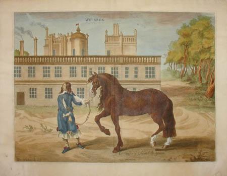 Le Superbe Cheval de Spanie, Welbeck