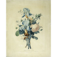 Prevost Antique Botanical Print Bouquet Roses Iris