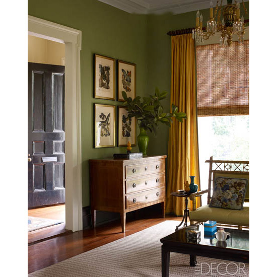 Pochoir prints of insects and butterflies from the George Glazer Gallery in the front parlor of a New Orleans home as pictured in Elle Decor.