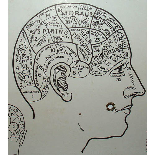 Who's What Phrenology Chart, detail