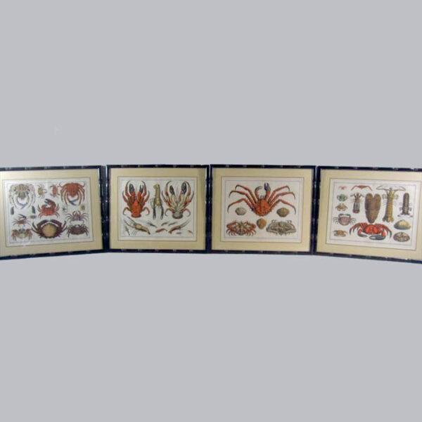 Seba Crabs Four Plates