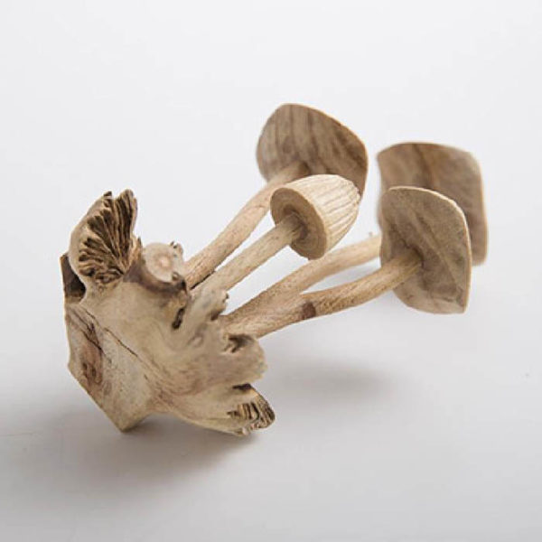 Mushroom Sculptures, detail