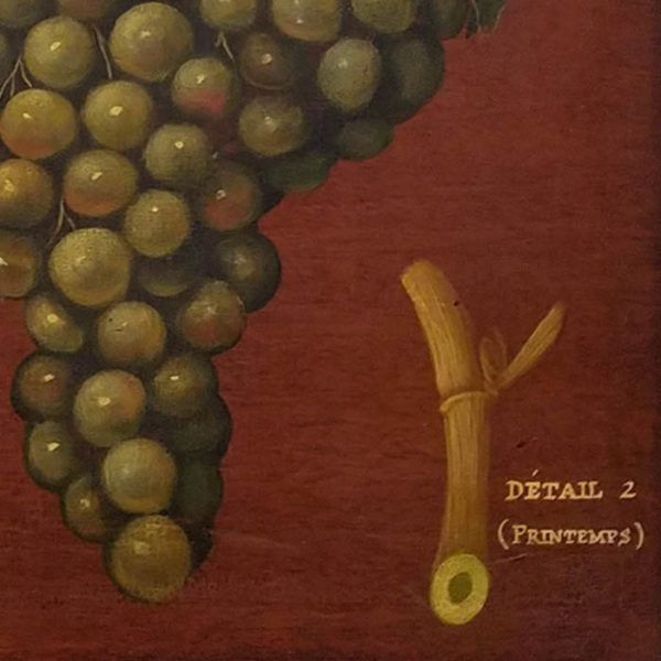 Clos de Vougeot [Green Grapes], detail