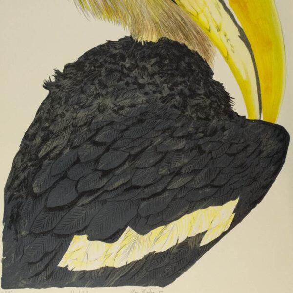 Allen Blagden, Hornbill I, detail