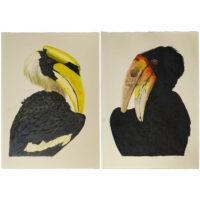Allen Blagden, Hornbill I and Hornbill II