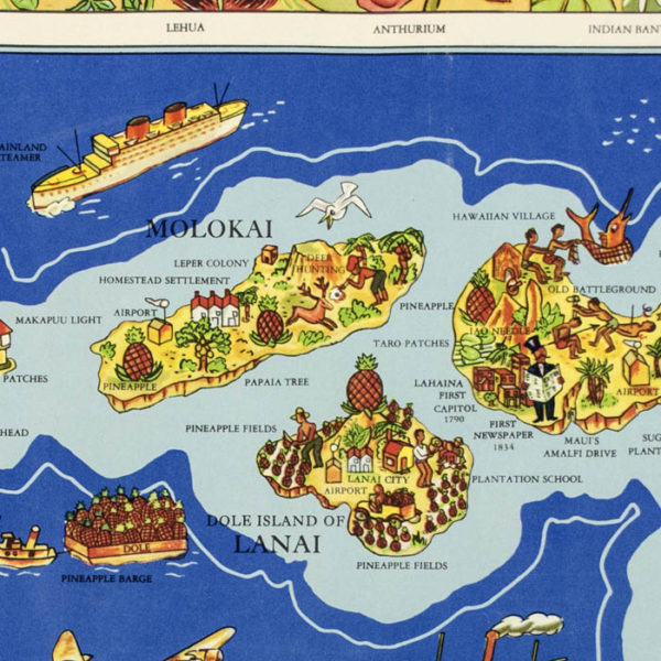 The Dole Map of the Hawaiian Islands, U.S.A., detail